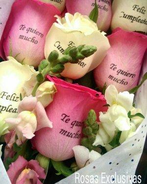 rosas exclusivas_002