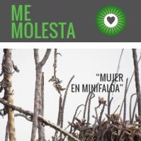 Memolesta_enminifalda-carolina guzman-revista pazcana